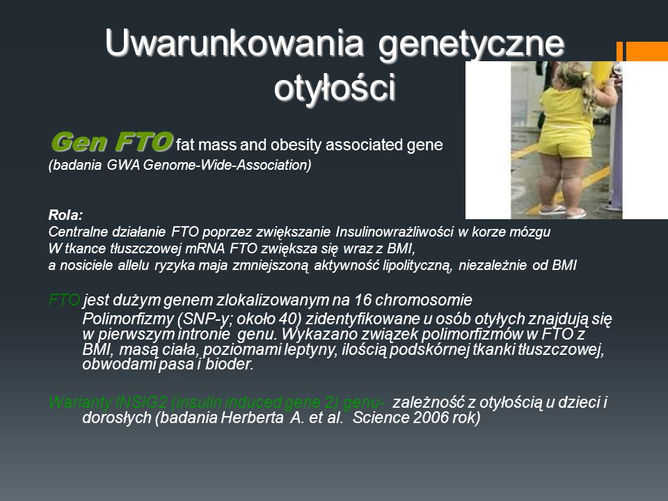 Uwarunkowania genetyczne otyłości