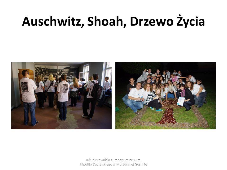 Auschwitz, Shoah, Drzewo Życia