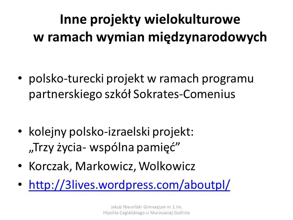 Inne projekty wielokulturowe w ramach wymian międzynarodowych
