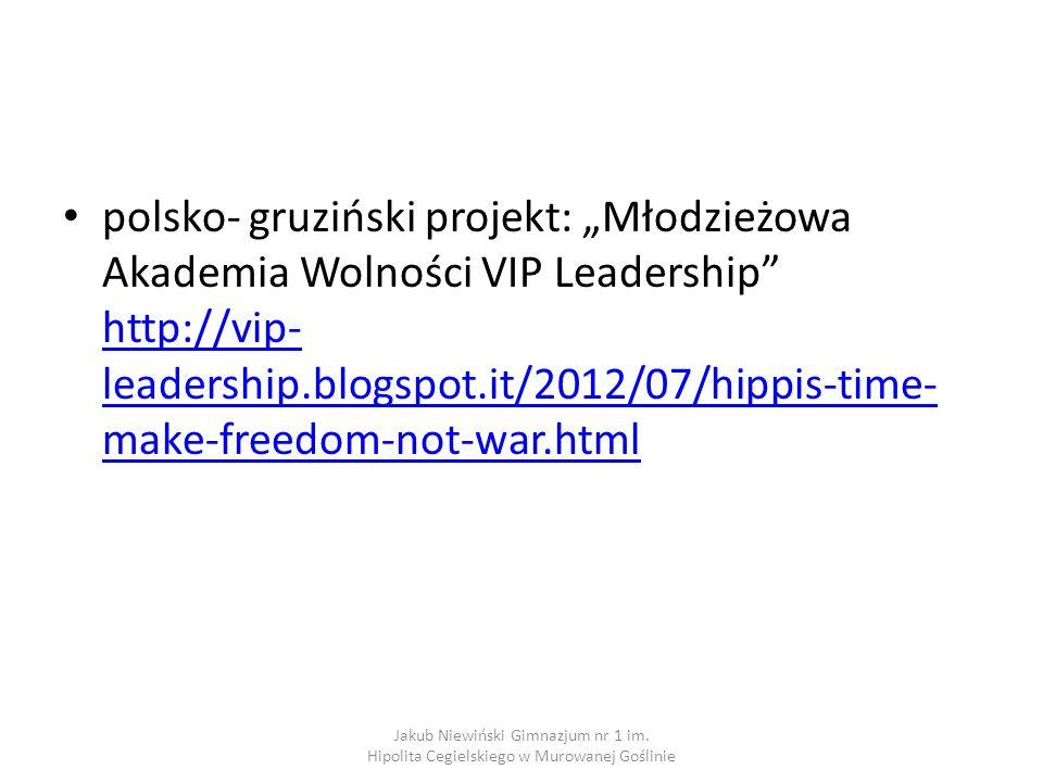 "polsko- gruziński projekt: ""Młodzieżowa Akademia Wolności VIP Leadership http://vip-leadership.blogspot.it/2012/07/hippis-time-make-freedom-not-war.html"