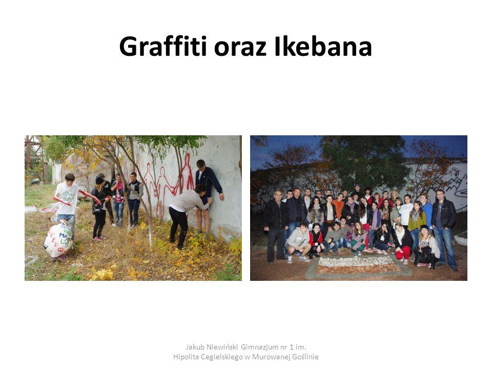 Graffiti oraz Ikebana Jakub Niewiński Gimnazjum nr 1 im. Hipolita Cegielskiego w Murowanej Goślinie