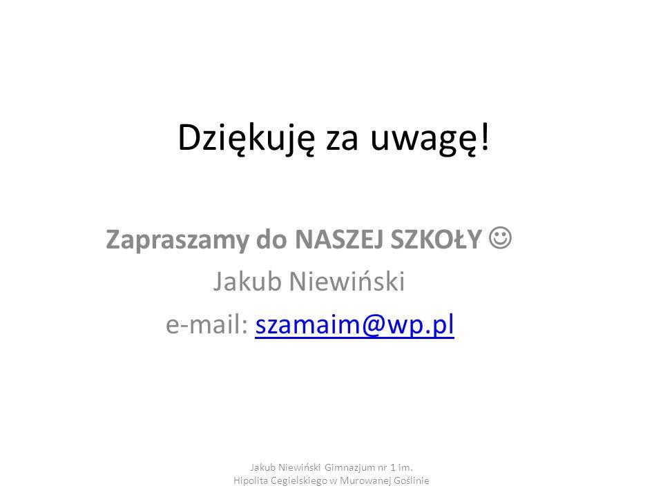 Zapraszamy do NASZEJ SZKOŁY  Jakub Niewiński e-mail: szamaim@wp.pl
