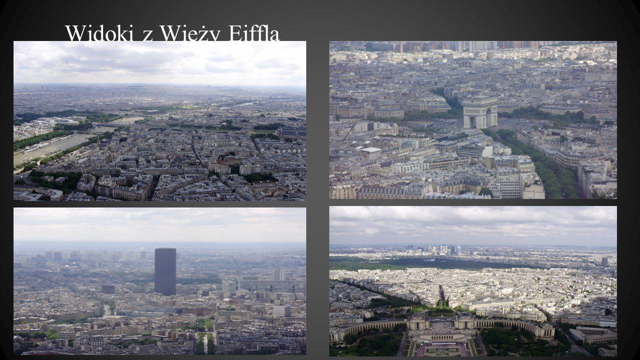 Widoki z Wieży Eiffla