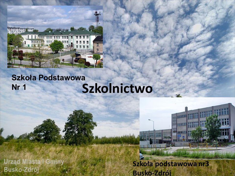 Szkolnictwo Szkoła Podstawowa Nr 1 Szkoła podstawowa nr3 Busko-Zdrój