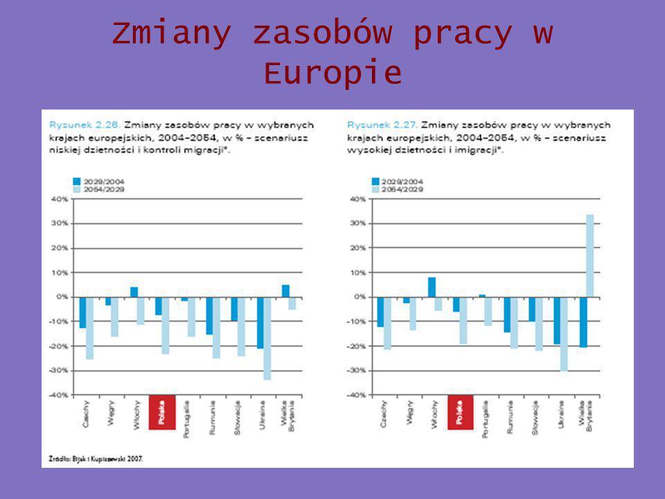 Zmiany zasobów pracy w Europie