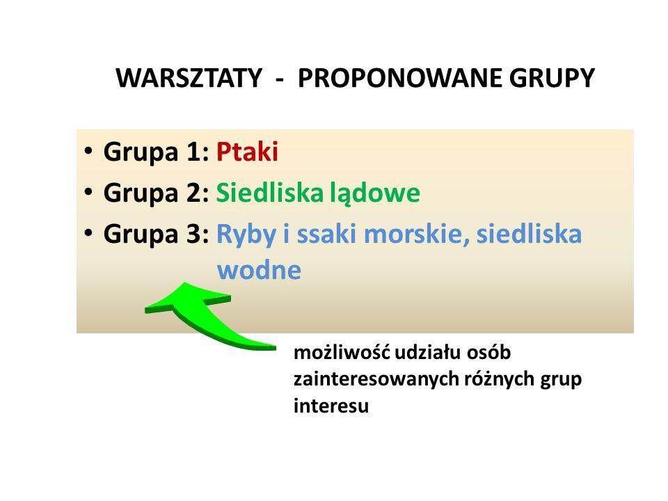 WARSZTATY - PROPONOWANE GRUPY