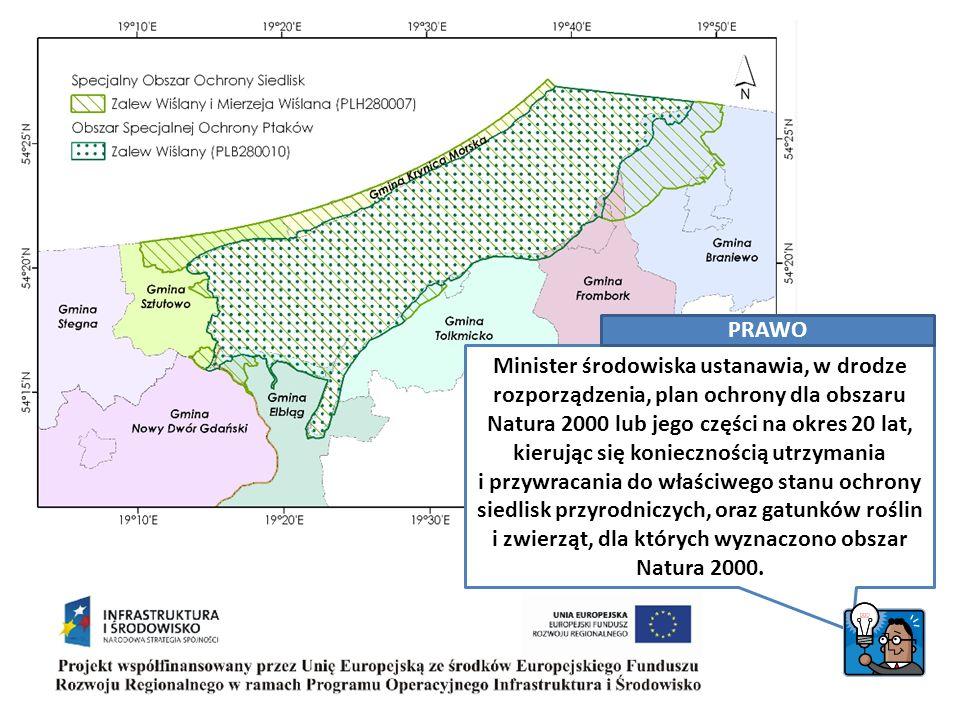 Minister środowiska ustanawia, w drodze rozporządzenia, plan ochrony dla obszaru Natura 2000 lub jego części na okres 20 lat, kierując się koniecznością utrzymania i przywracania do właściwego stanu ochrony siedlisk przyrodniczych, oraz gatunków roślin i zwierząt, dla których wyznaczono obszar Natura 2000.