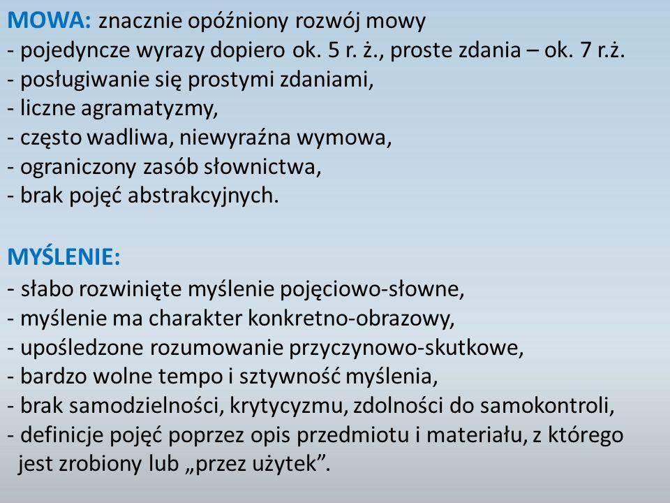 MOWA: znacznie opóźniony rozwój mowy
