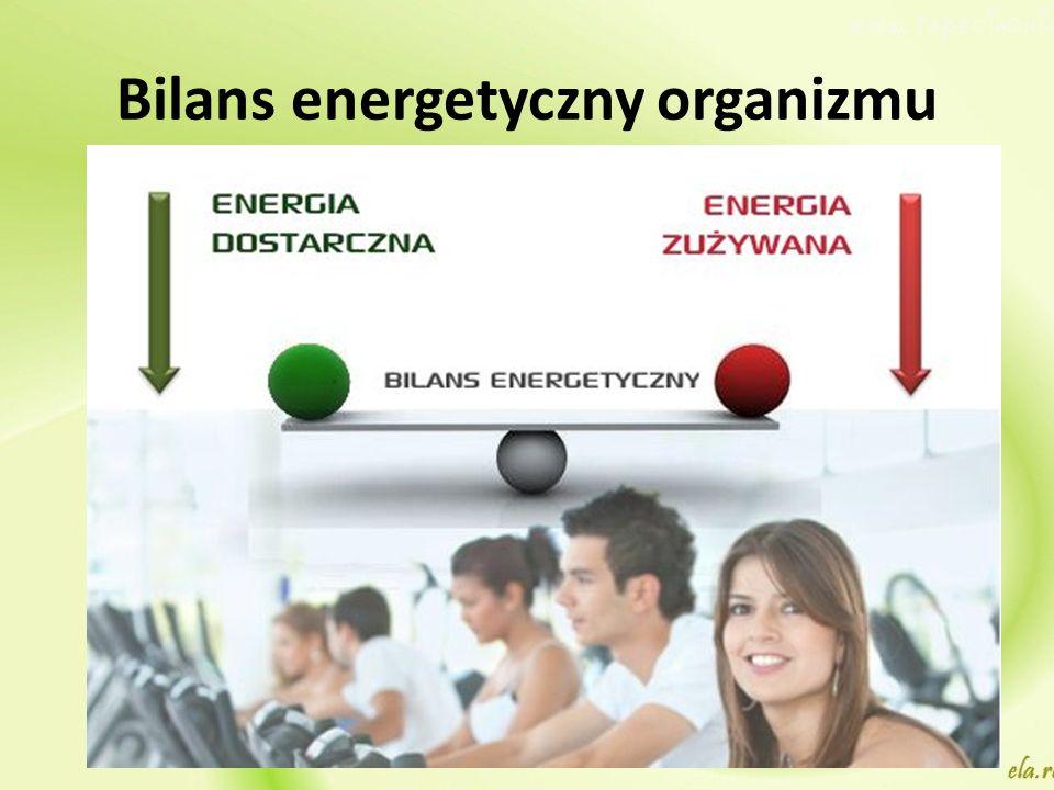 Bilans energetyczny organizmu