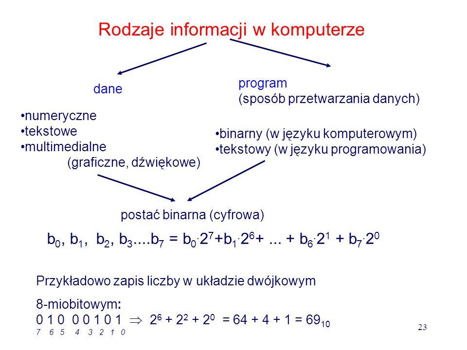 Rodzaje informacji w komputerze