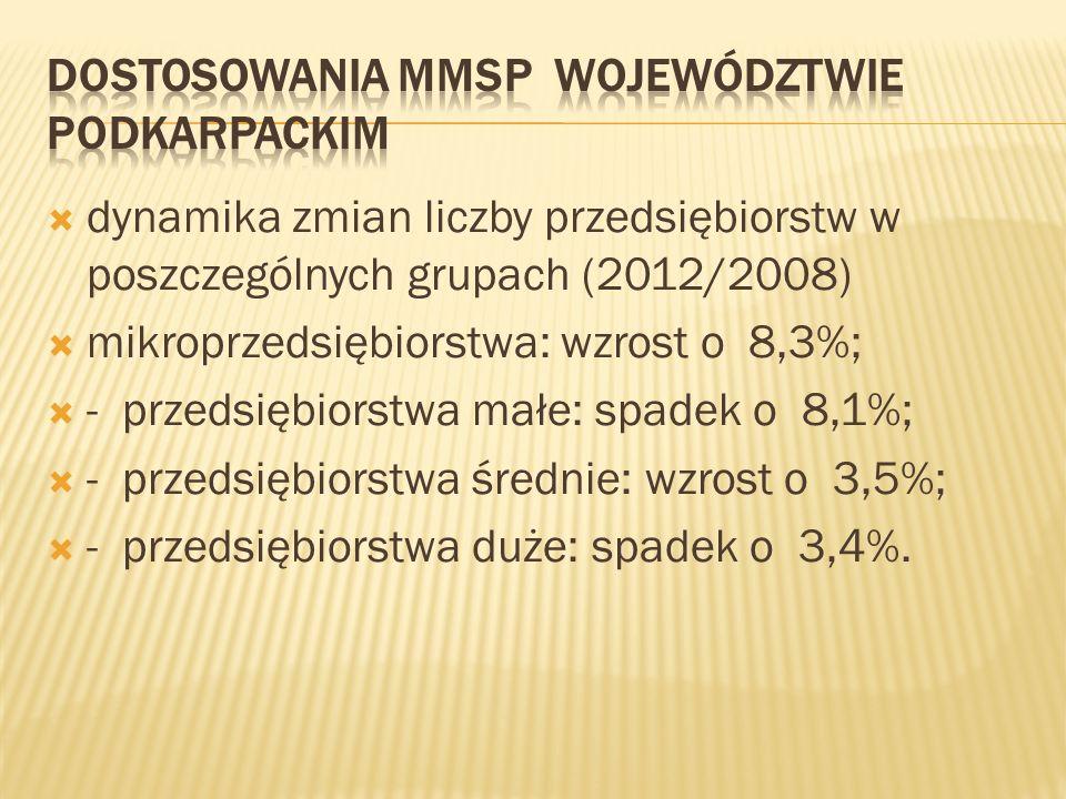 Dostosowania MMSP województwie podkarpackim