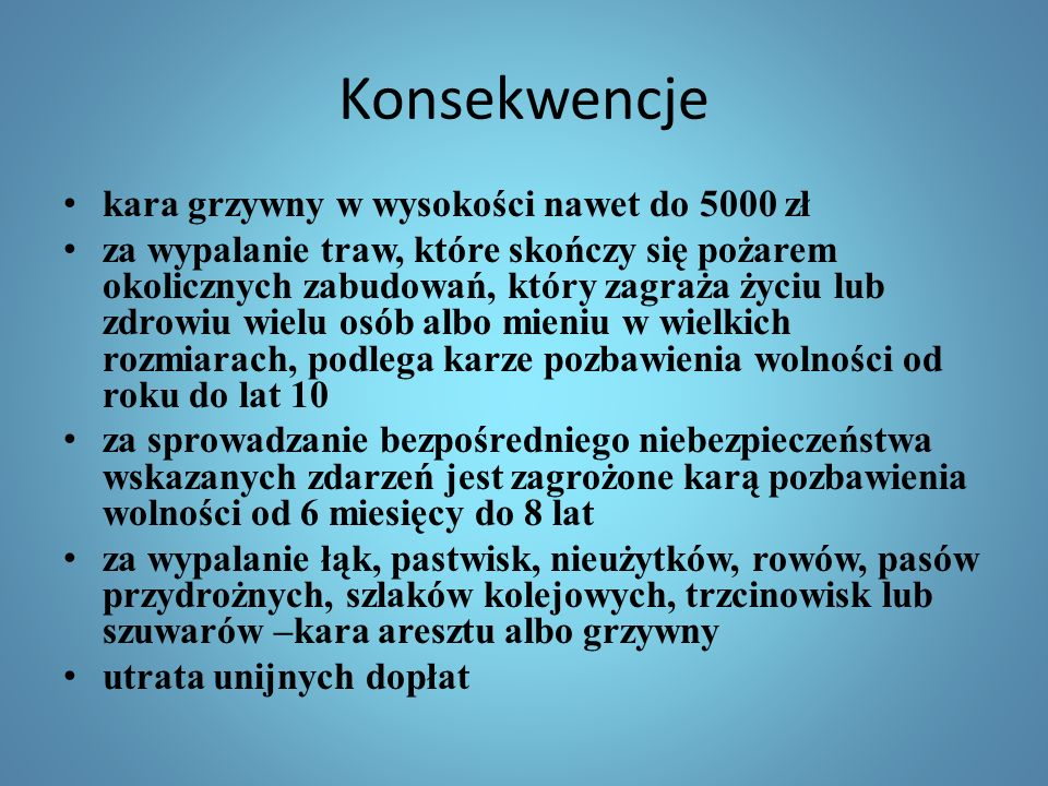 Konsekwencje kara grzywny w wysokości nawet do 5000 zł