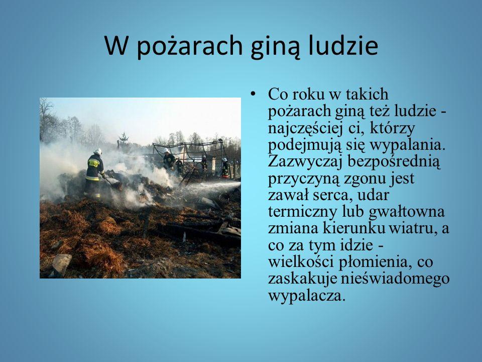 W pożarach giną ludzie
