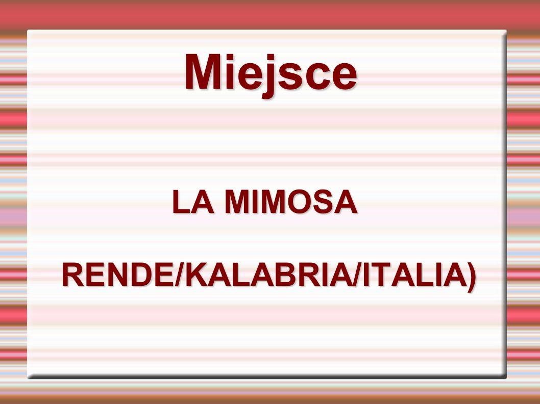 LA MIMOSA RENDE/KALABRIA/ITALIA)