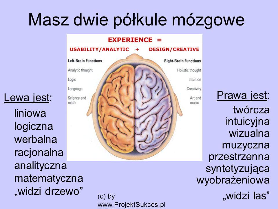 Masz dwie półkule mózgowe