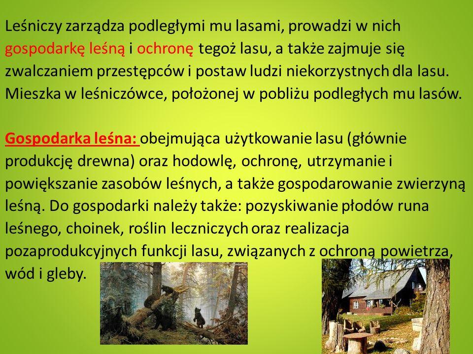 Leśniczy zarządza podległymi mu lasami, prowadzi w nich gospodarkę leśną i ochronę tegoż lasu, a także zajmuje się zwalczaniem przestępców i postaw ludzi niekorzystnych dla lasu.