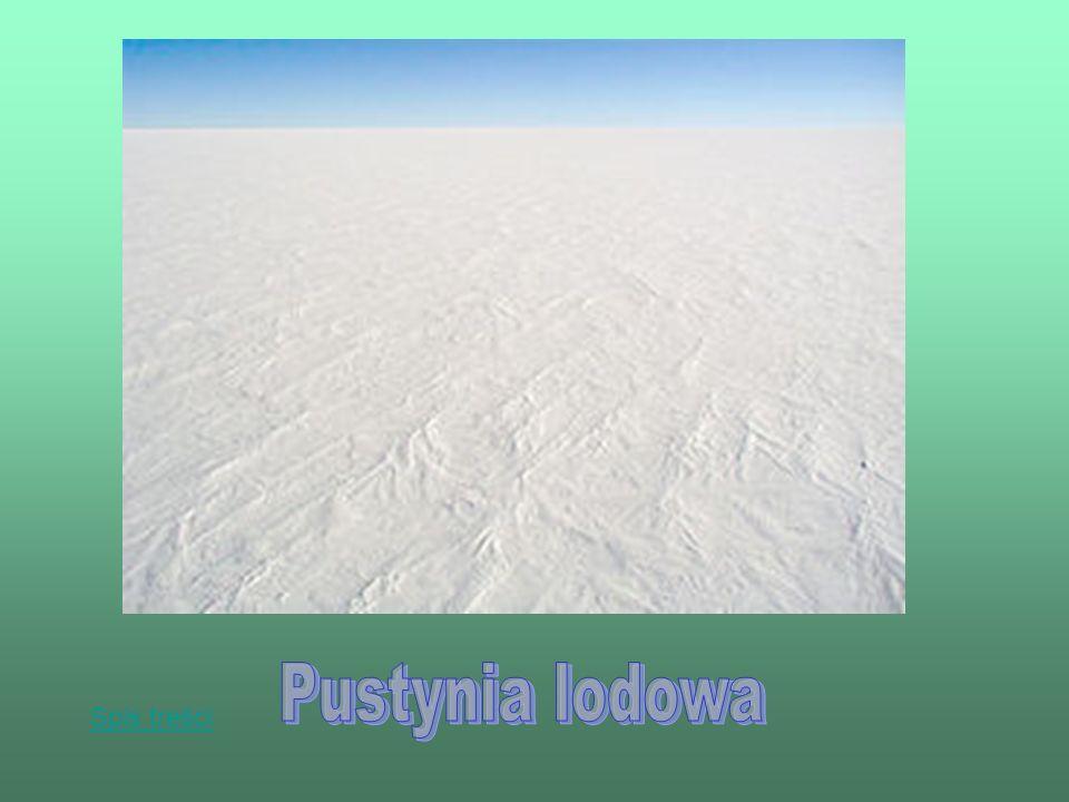 Pustynia lodowa Spis treści