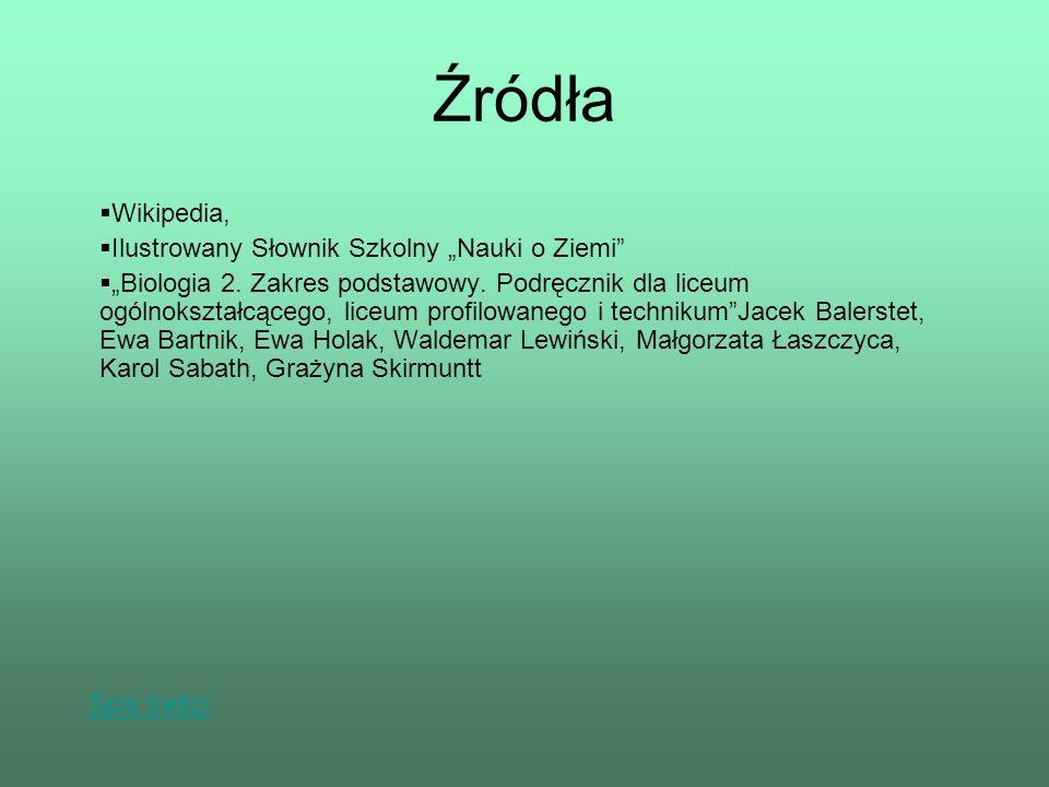 """Źródła Wikipedia, Ilustrowany Słownik Szkolny """"Nauki o Ziemi"""