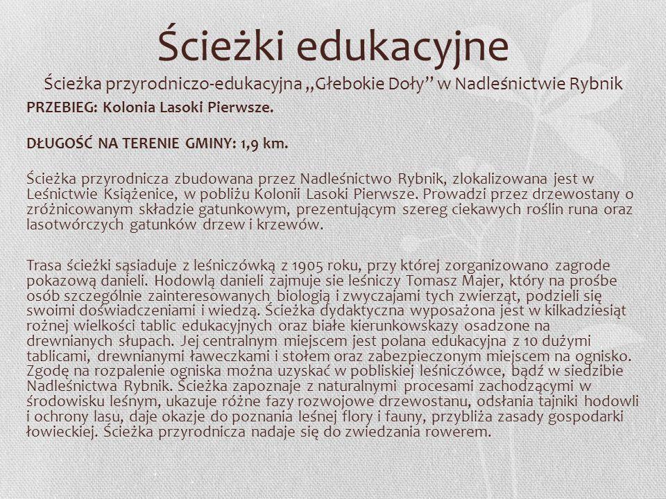 """Ścieżki edukacyjne Ścieżka przyrodniczo-edukacyjna """"Głebokie Doły w Nadleśnictwie Rybnik"""