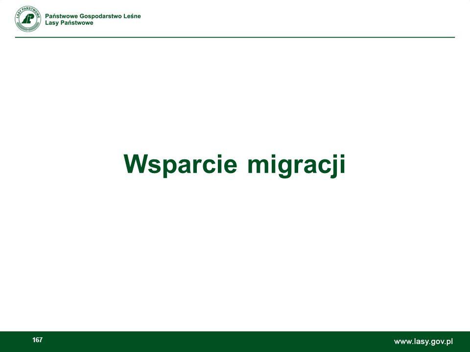Wsparcie migracji
