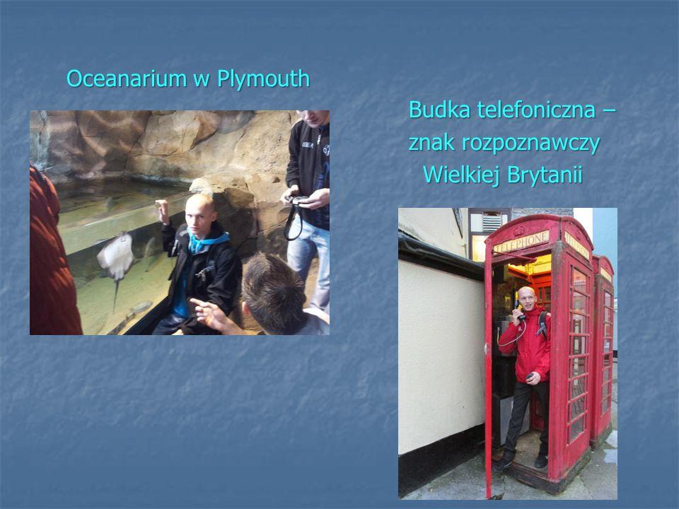 Oceanarium w Plymouth Budka telefoniczna – znak rozpoznawczy Wielkiej Brytanii