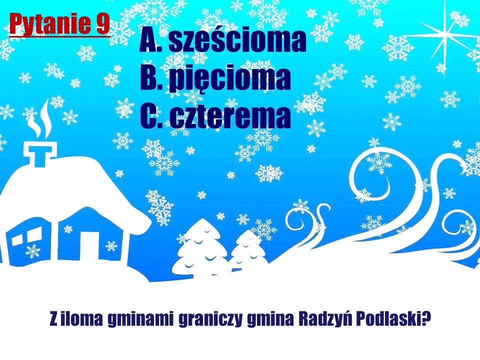 Z iloma gminami graniczy gmina Radzyń Podlaski