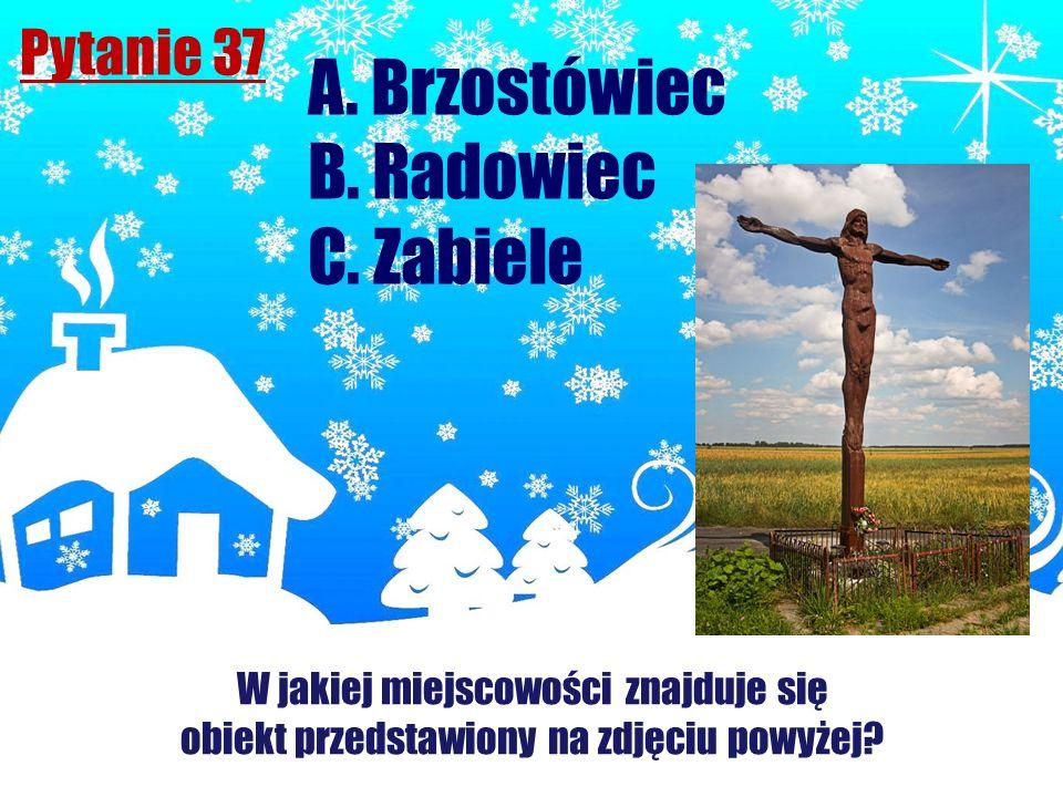 A. Brzostówiec B. Radowiec C. Zabiele Pytanie 37