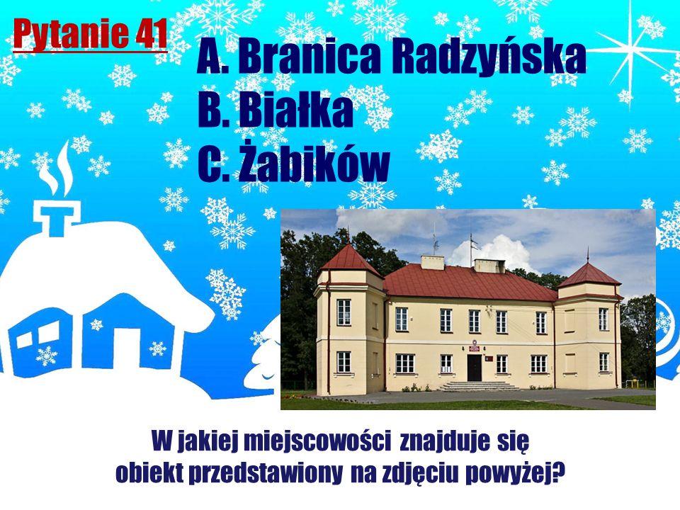 A. Branica Radzyńska B. Białka C. Żabików Pytanie 41