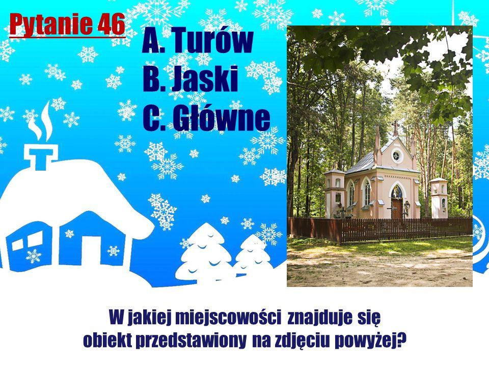 A. Turów B. Jaski C. Główne Pytanie 46