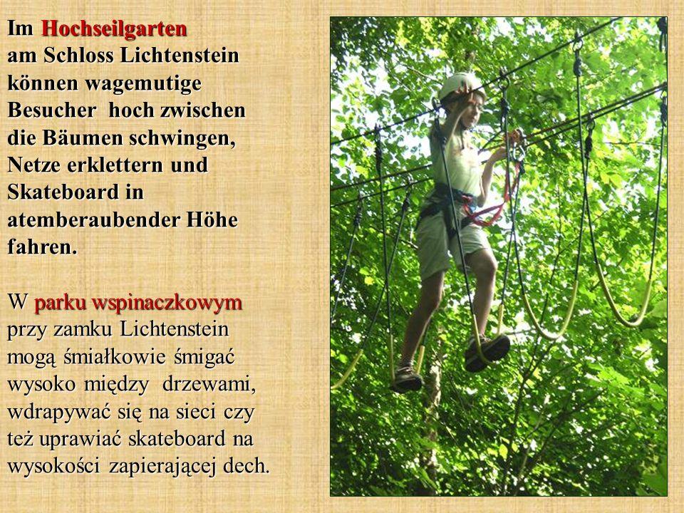 Im Hochseilgarten am Schloss Lichtenstein können wagemutige Besucher hoch zwischen die Bäumen schwingen, Netze erklettern und Skateboard in atemberaubender Höhe fahren.