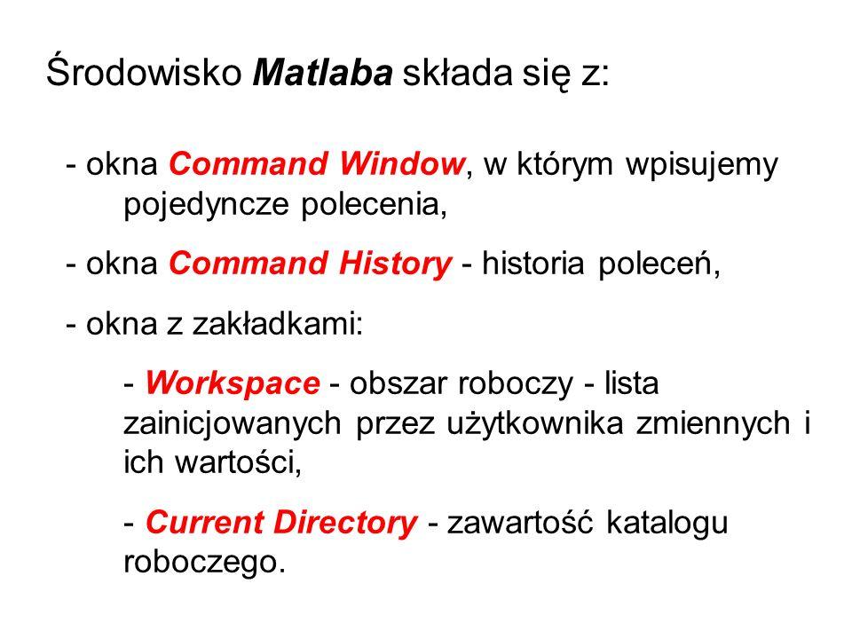 Środowisko Matlaba składa się z: