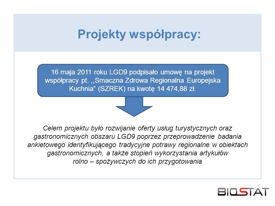 Projekty współpracy:
