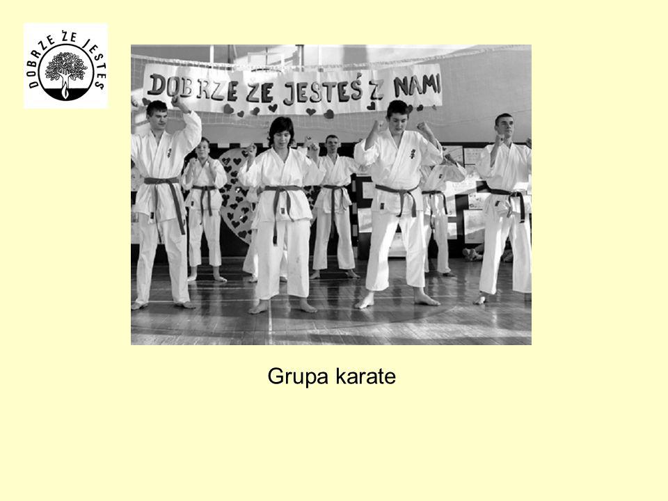 Grupa karate
