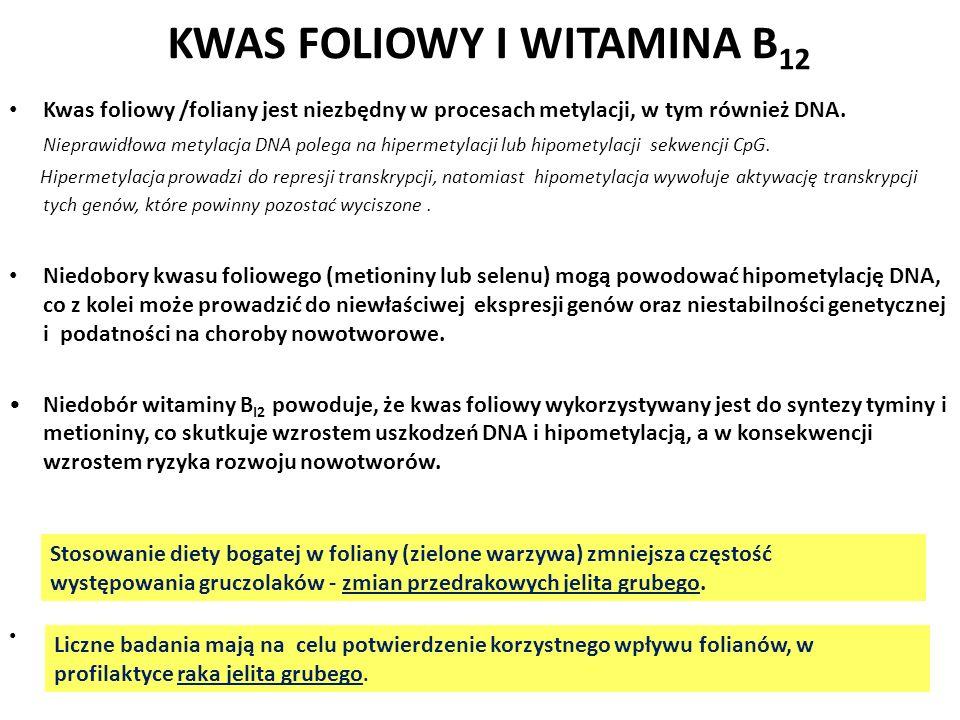 KWAS FOLIOWY I WITAMINA B12