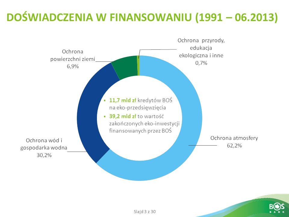 DOŚWIADCZENIA W FINANSOWANIU (1991 – 06.2013)