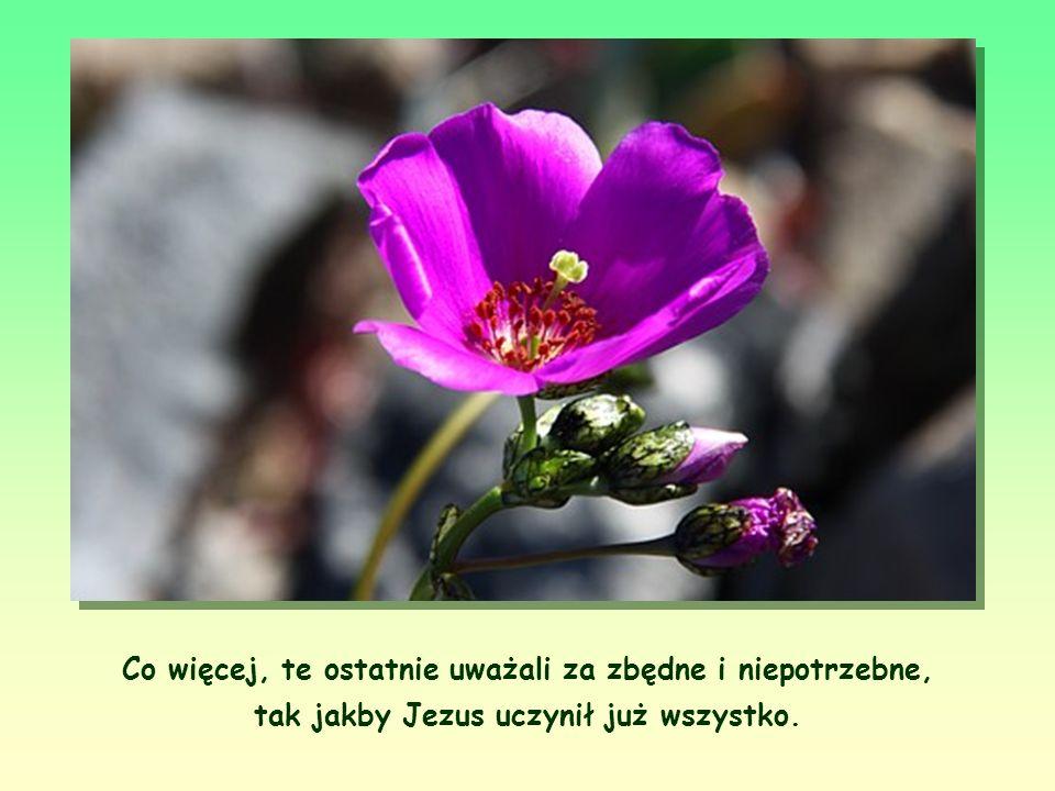 Co więcej, te ostatnie uważali za zbędne i niepotrzebne, tak jakby Jezus uczynił już wszystko.