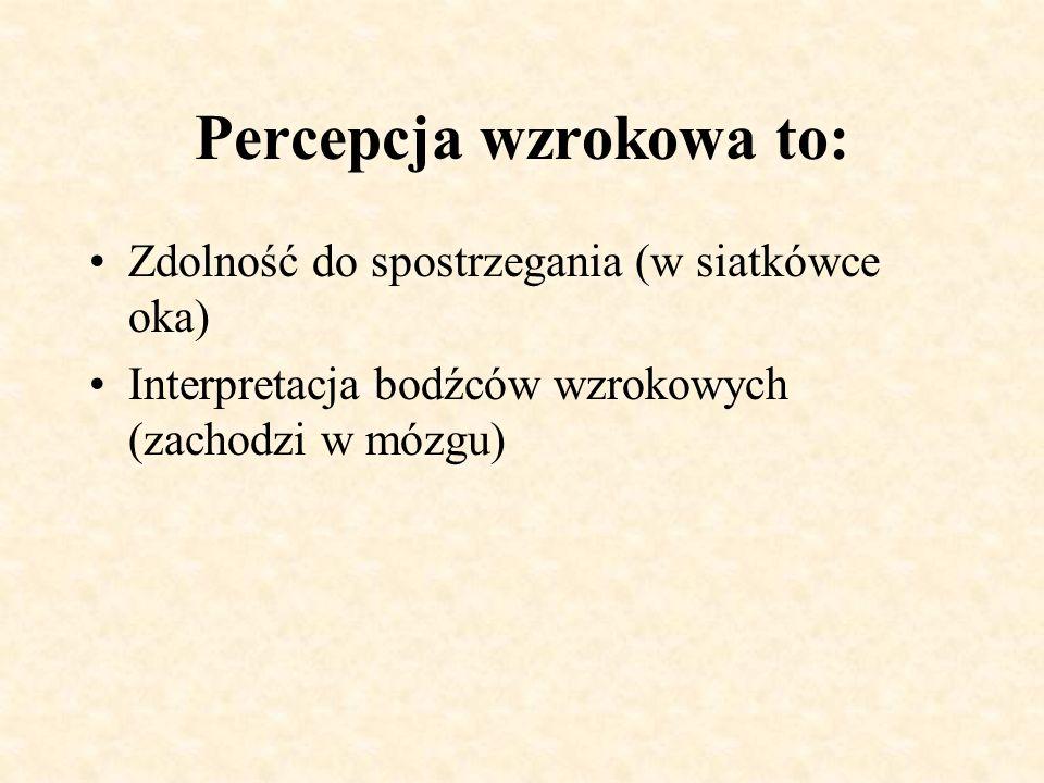 Percepcja wzrokowa to: