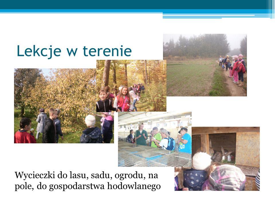 Lekcje w terenie Wycieczki do lasu, sadu, ogrodu, na pole, do gospodarstwa hodowlanego