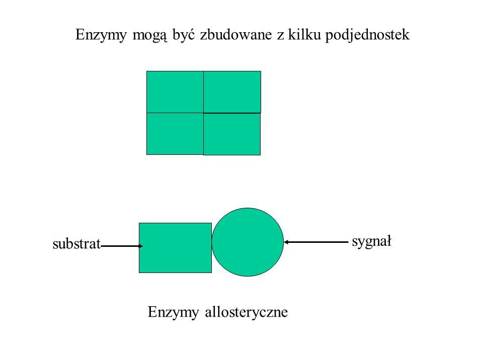Enzymy mogą być zbudowane z kilku podjednostek