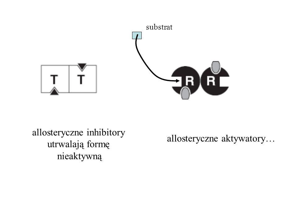 allosteryczne inhibitory utrwalają formę nieaktywną