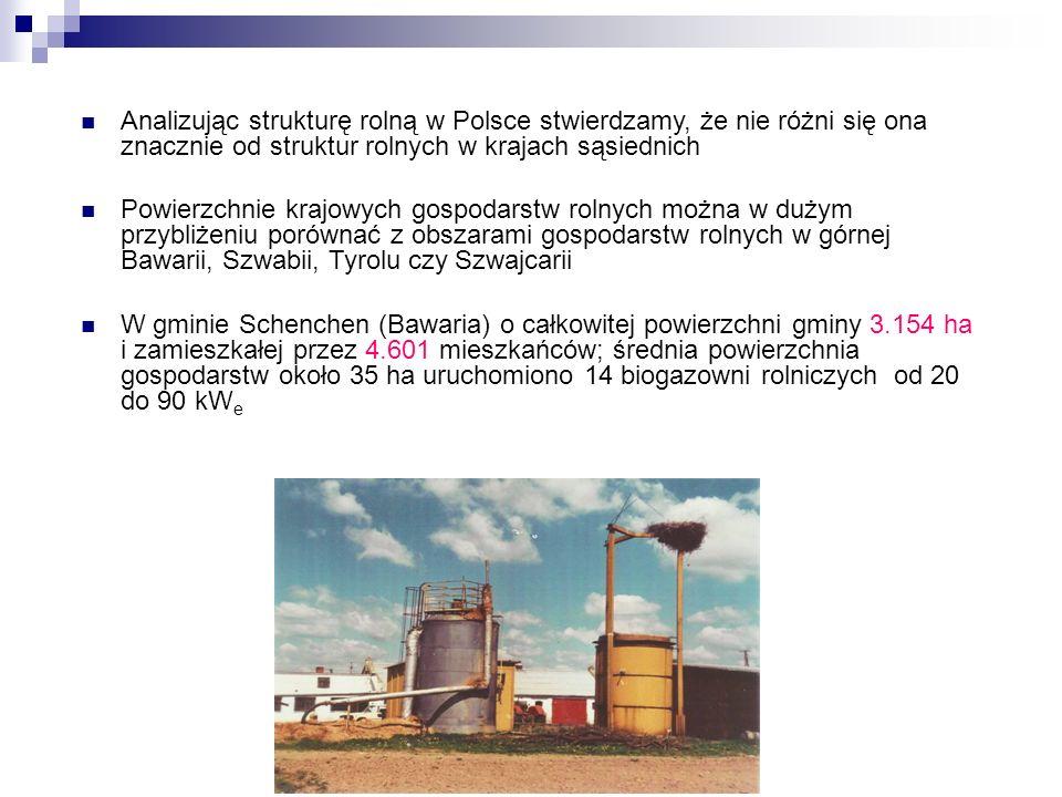 Analizując strukturę rolną w Polsce stwierdzamy, że nie różni się ona znacznie od struktur rolnych w krajach sąsiednich