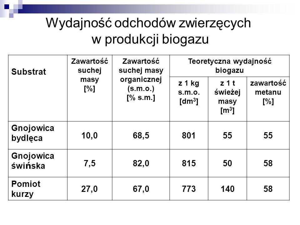 Wydajność odchodów zwierzęcych w produkcji biogazu