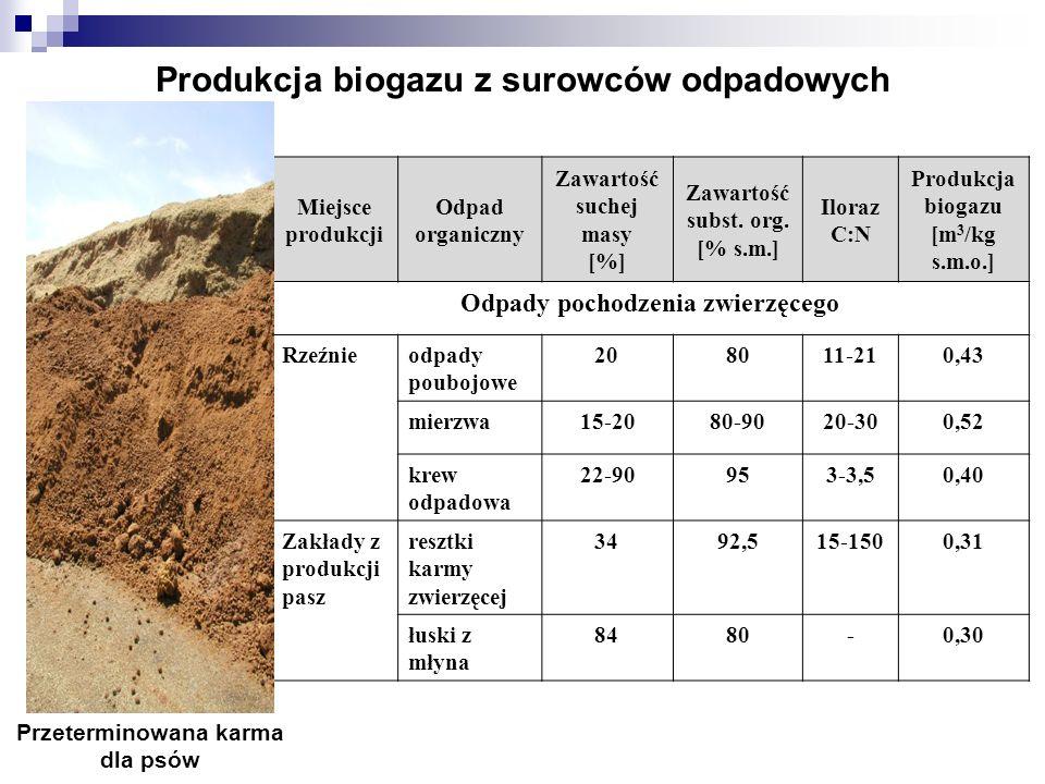 Produkcja biogazu z surowców odpadowych
