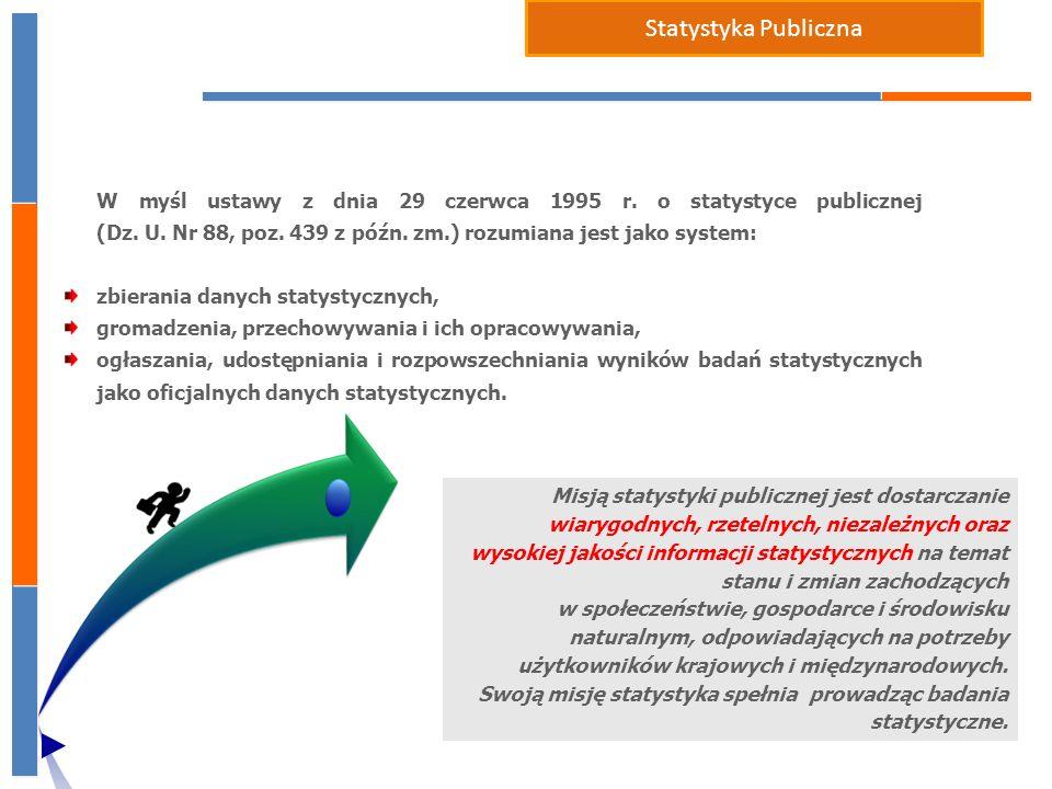 Statystyka Publiczna