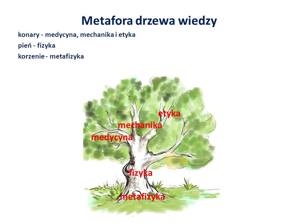Metafora drzewa wiedzy
