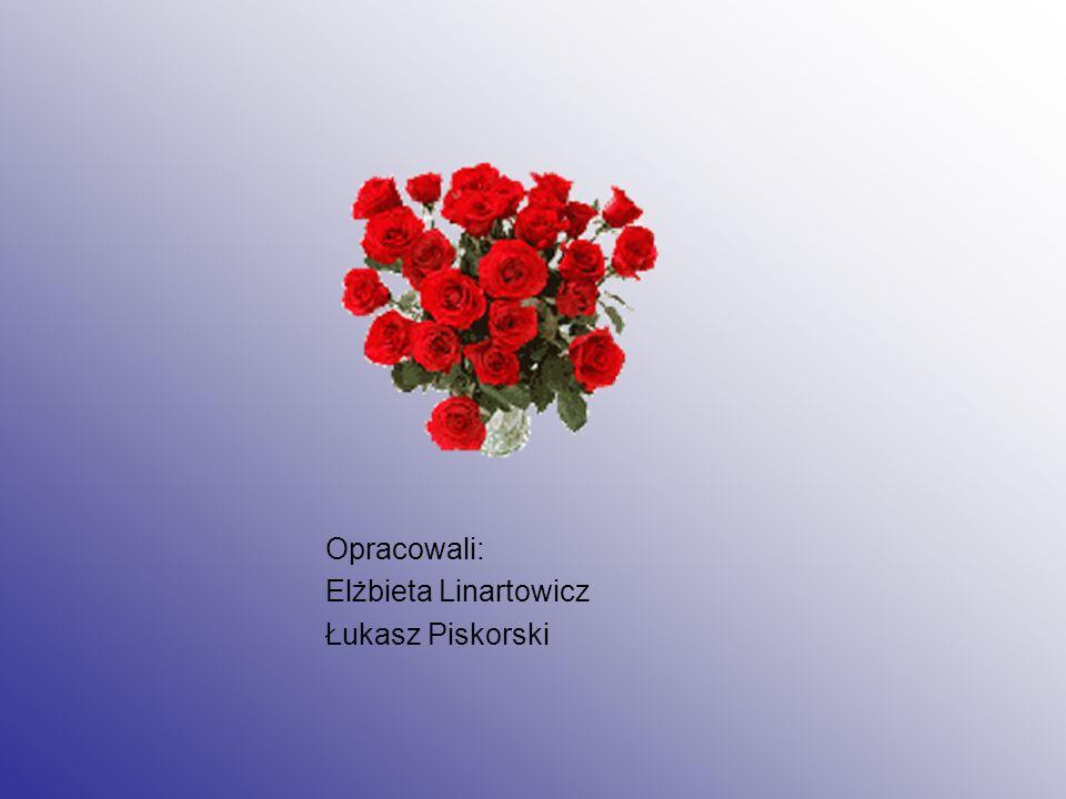 Opracowali: Elżbieta Linartowicz Łukasz Piskorski