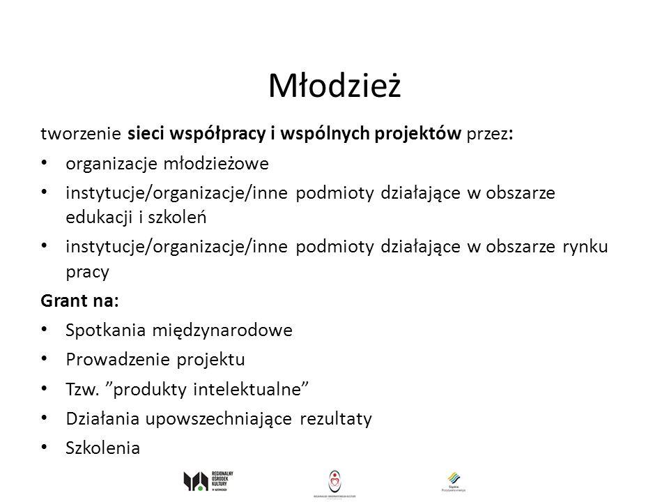 Młodzież tworzenie sieci współpracy i wspólnych projektów przez: