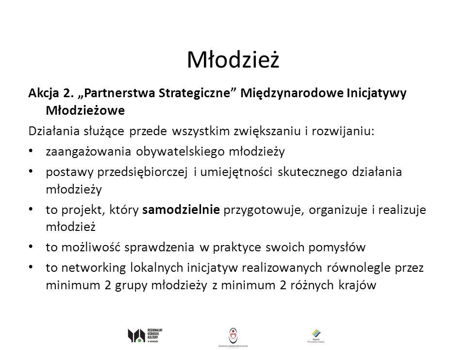 """Młodzież Akcja 2. """"Partnerstwa Strategiczne Międzynarodowe Inicjatywy Młodzieżowe. Działania służące przede wszystkim zwiększaniu i rozwijaniu:"""