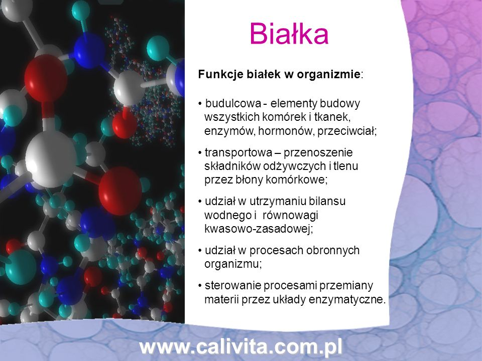 Białka www.calivita.com.pl Funkcje białek w organizmie: