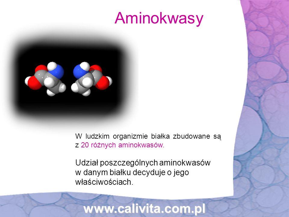 Aminokwasy www.calivita.com.pl
